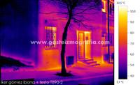 Termografía Calle La Presa 1, Vitoria-Gasteiz